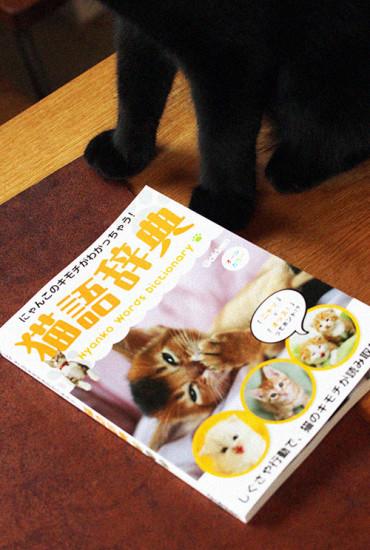 uchimari-blog153
