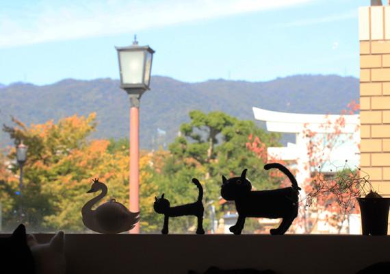 uchimari-blog351