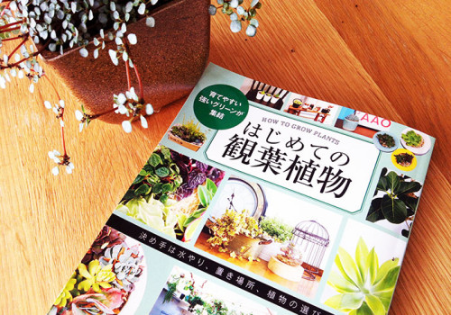 uchimari-blog95
